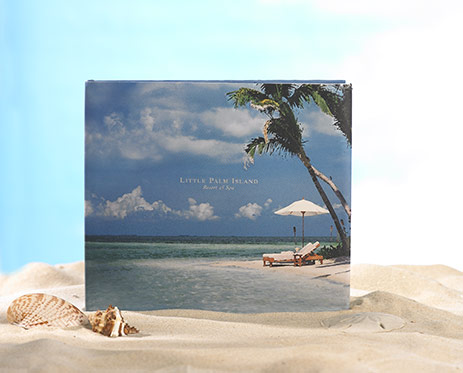 Little Palm Island Book